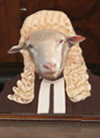 Sheepish New Zealand Lawyers Pose Threat to Law